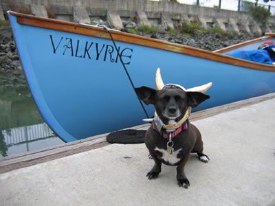 Pickles, our Viking mascot